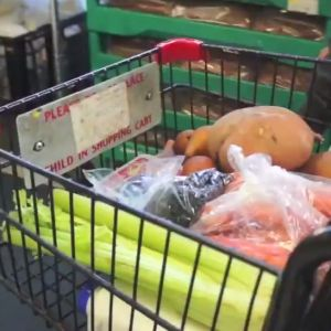 A shopping cart holds vegetables like celery and sweet potatoes