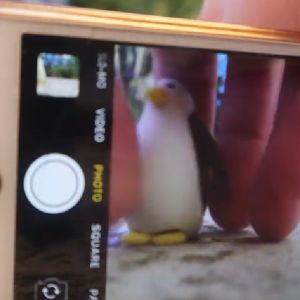 Animating a penguin by hand and taking photos of it with a phone
