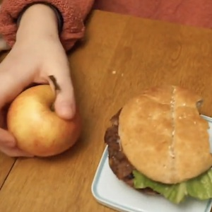 Looking at the differences between an apple and a hamburger as sources of nutrition